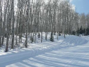 Lot in The Colony at Canyons Ski Resort