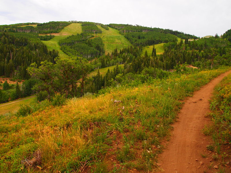 Park City Trails