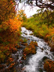 View of Cascade Springs