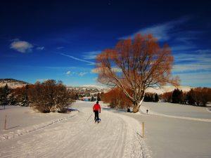 White Pine - Park City Nordic Skiing