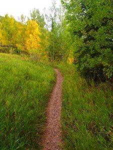 Park City Trails